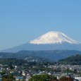 Fuji from Tokai Univ.